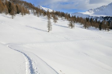 Snowy mountain landscape with snow shoes track