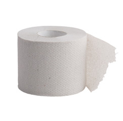 Perforated roll of toilet paper