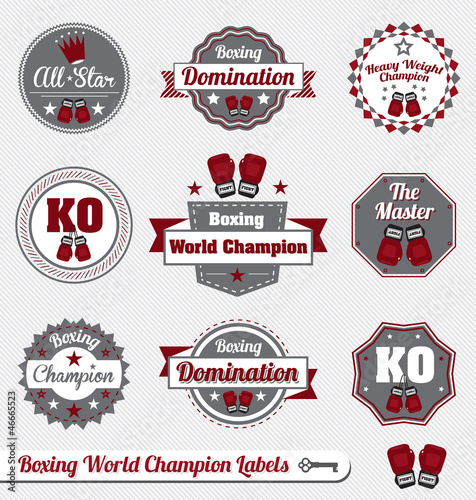 Vector Set: Boxing World Champion Labels and Icons