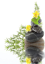 Samenstelling roller, bamboe en bloemen