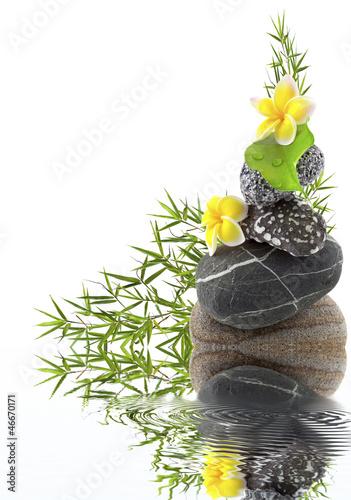 composition galet, bambou et fleurs