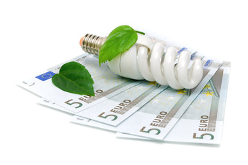 bulbs and euro on white background