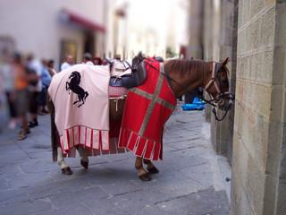 Cavallo da parata