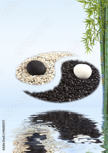 concept zen bambou yin yang