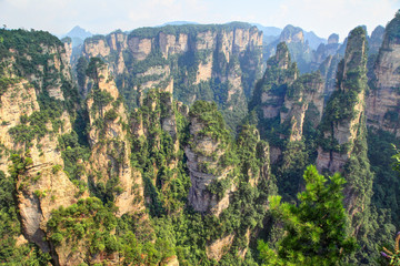 zhangjiajie - point de vue
