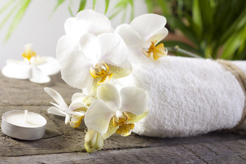 Orchids and towel on wooden boards spa concept