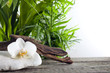 Orchid on stone with palm spa concept against white