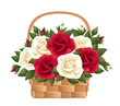 Red and white roses in basket. Vector illustration.