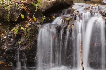 Montseny in autumn