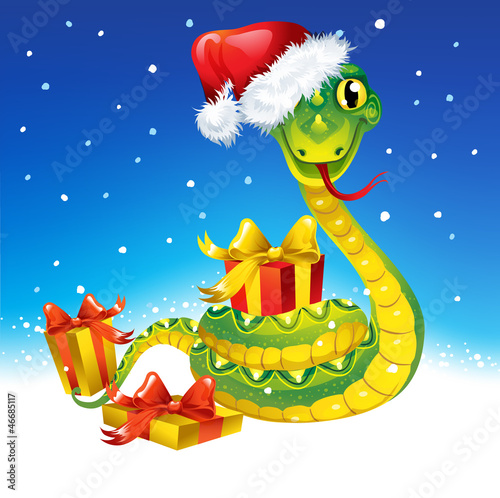 Snake. Symbol of new 2013 year.  With gift and in christmas cap