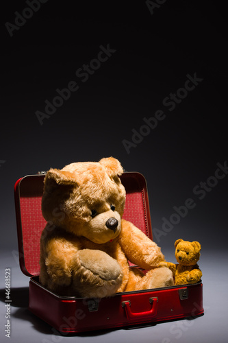 Teddy friends and suitcase
