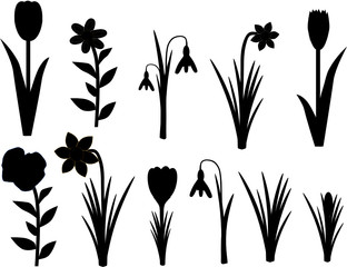 Frühlingsblumen Silhouette Schwarz
