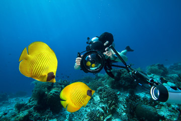 Underwater Photographer scuba diving with camera  in Red sea