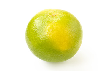 Citrus sveetie on a white background