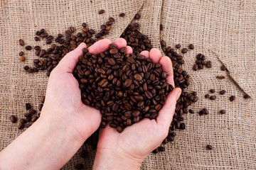 roasted coffee beans on  hands