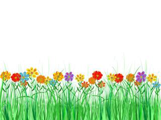Blumenwiese, Rasen, Gras, Blumen