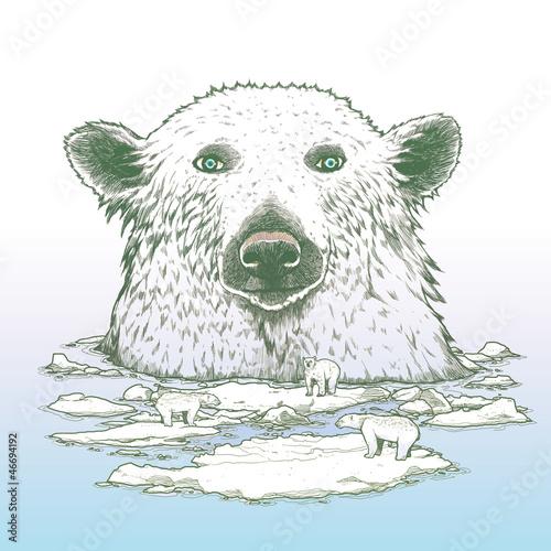 Giant polar bear of arctic - 46694192