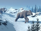 Mammoths walk