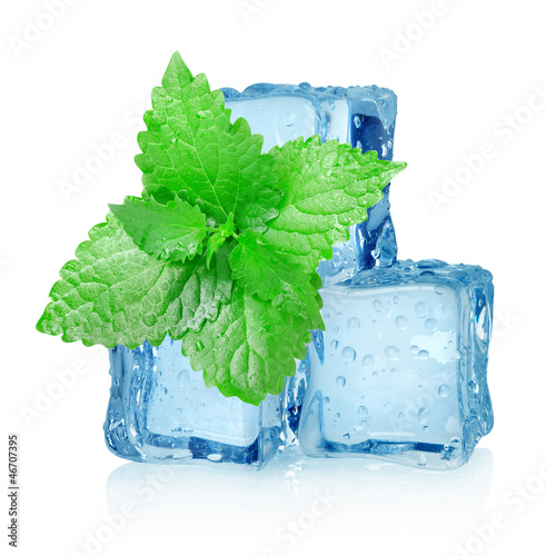 Three ice cubes and mint