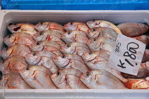 Fish Market in Tokyo