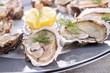oyster platter - 46713571
