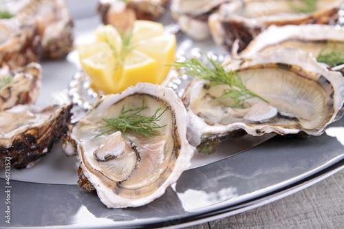 Plexiglas Schaaldieren oyster platter