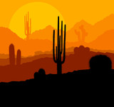 Fototapety Cactus plants in Mexico desert sunset vector