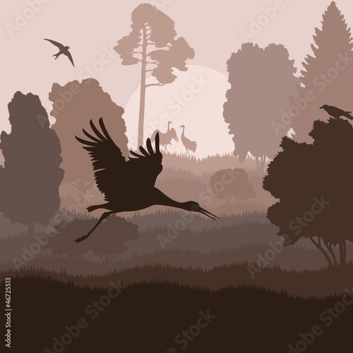 Bird crane landscape background vector