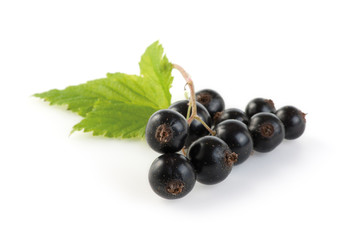 Blackcurrant bunch