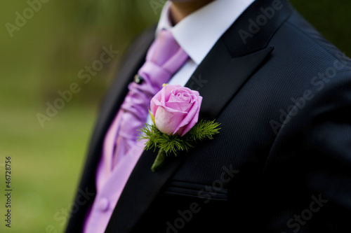 Pink Rose in a Groom Suit