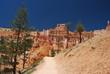 Chemin dans Bryce Canyon