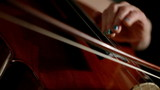 Cello: Cellist demonstrating left hand fingering technique