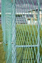 Metallic green goal