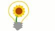 Sonnenblume in Glühbirne