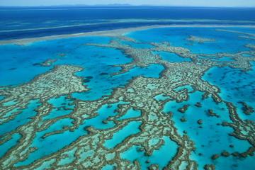 Grande Barriere de corail, Australie