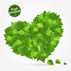 Vector natural eco green lives. Bright design label