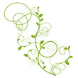 eco friendly floral design, green silhouette over white