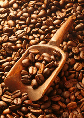 Rich brown fresh roasted coffee beans