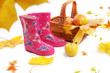 Rain boots, basket with apples and falling leaves