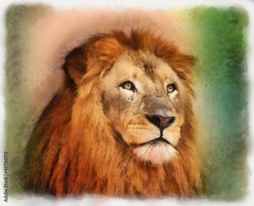 Royal King Lion Portrait Water Color Painting