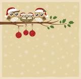 Fototapety owl family christmas celebration