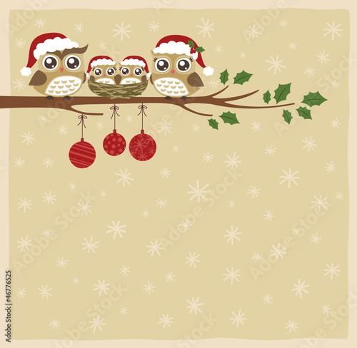 owl family christmas celebration