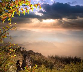 Alishan, gap the top Sunset mexed with nice maple, Taiwan