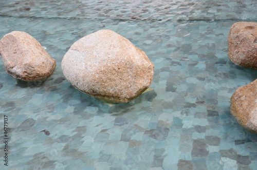 Art, gardening, flowers, rocks, design
