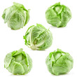Collection of green cabbage isolated on white