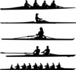 rowing collection - vector - 46793169