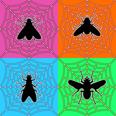 flies in spider's web