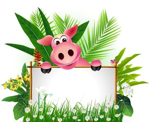 funny pig with blank sign and tropical forest