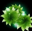 Green sparkling flowers
