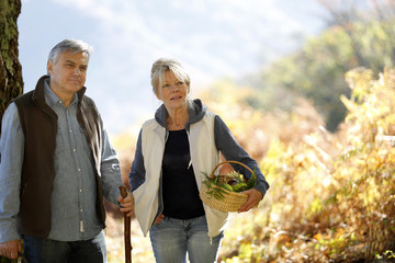Senior couple walking in forest in autumn